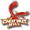 chestnut-hill