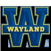 wayland-baptist-texas