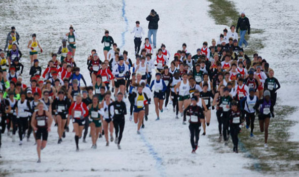 View the Division II Women's Cross Country Regional Rankings