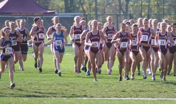 View the Division III Women's Cross Country Regional Rankings