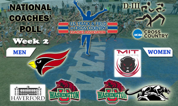 MIT Women Join North Central Men as Top Teams in Latest DIII National Poll