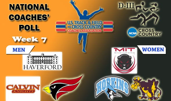 Haverford, MIT Hold Their Ground in Latest DIII National Cross Country Poll