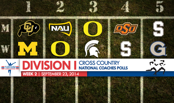 Division I Cross Country National Coaches Polls Remain Calm – But Not For Much Longer
