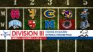 Women's Top-5 Changes Mark Week 5 Division III XC National Polls