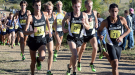Division I Men's Team Preview
