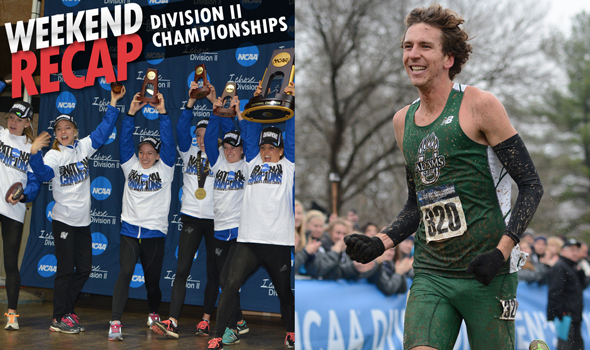 Breaking Down the NCAA Division II XC Championships