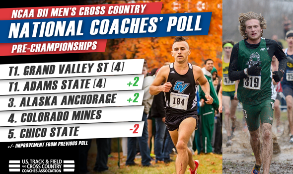 Two Teams Tied Atop Final Men's NCAA DII National Coaches' Poll