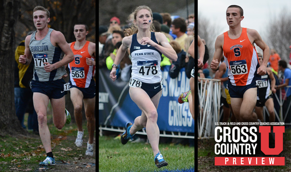 WEEKEND PREVIEW: Harry Groves Spiked Shoe & More