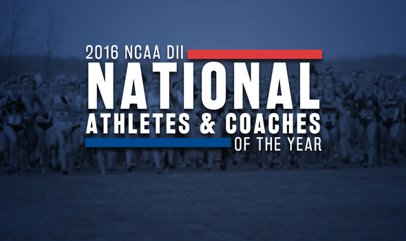 Postseason Awards Announced for 2016 NCAA DII Cross Country